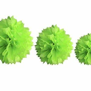Papierbälle apfelgrün,  Größen: 20/30/40 cm